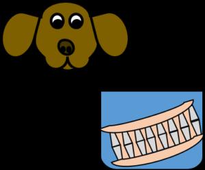 ITRF Sciences du vivant BAP A - dentier chien