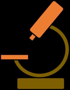 ITRF Sciences du vivant BAP A - microscope2